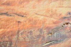 Fundo da madeira, madeira da textura Fotos de Stock