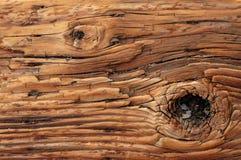 Fundo da madeira resistida com nó Imagem de Stock