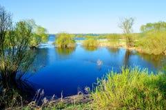 Fundo da mola - ajardine com as árvores no banco do rio azul Imagem de Stock Royalty Free