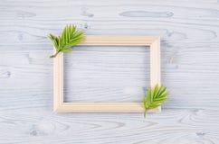 Fundo da mola do quadro de madeira vazio e folhas verdes novas na luz - placa de madeira azul Imagens de Stock Royalty Free