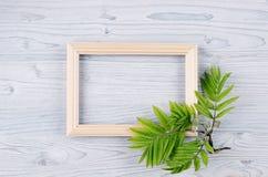 Fundo da mola do quadro de madeira vazio e folhas verdes novas na luz - placa de madeira azul Imagem de Stock