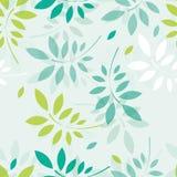 Fundo da mola do vetor com ramos e folhas Imagem de Stock