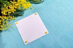 Fundo da mola - o cartão branco com espaço livre para o texto na mimosa floresce Imagens de Stock