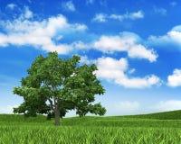 Fundo da natureza - céu, grama e árvore ilustração stock