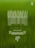 Fundo da natureza com etiqueta do eco do alimento do padrão orgânico Conceito Protecção ambiental Fotografia de Stock
