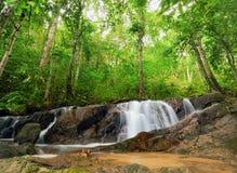 Fundo da natureza da fotografia do hdr da floresta. Rio da montanha Imagem de Stock