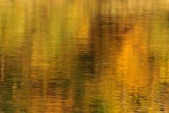 Fundo da natureza - reflexão na água imagens de stock royalty free