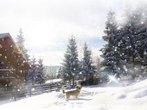 Fundo da neve Abeto Cão na neve Casa de campo da montanha imagem de stock royalty free