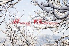Fundo da neve do Natal com ramos e flocos de neve de árvore Imagem de Stock