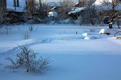 Fundo da neve fresca ondulada com matiz azul imagens de stock