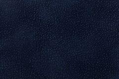 Fundo da obscuridade - tela azul decorada com animal do revestimento Foto de Stock