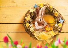 Fundo da Páscoa com grinalda, tulipas e coelho foto de stock royalty free