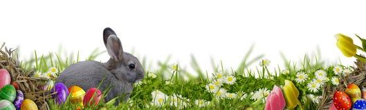 Fundo da Páscoa com ovos da páscoa e coelhinho da Páscoa Fotografia de Stock Royalty Free