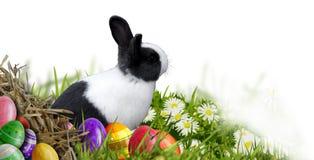 Fundo da Páscoa com ovos da páscoa e coelhinho da Páscoa Foto de Stock Royalty Free