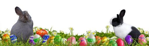 Fundo da Páscoa com ovos da páscoa e coelhinhos da Páscoa Imagem de Stock