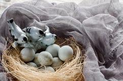 Fundo da Páscoa com pássaros e os ovos decorativos no ninho Imagem de Stock Royalty Free