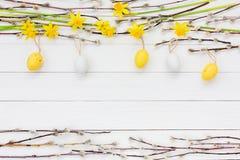 Fundo da Páscoa com ramo de árvore decorativo dos ovos da páscoa, do narciso e do salgueiro Imagens de Stock Royalty Free