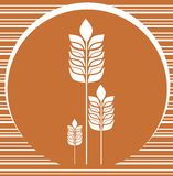 Fundo da padaria com as orelhas de milho Foto de Stock Royalty Free