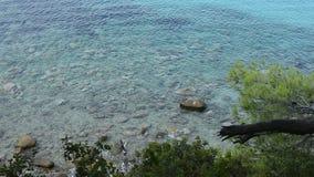 Fundo da paisagem do mar Opinião do mar em Sunny Day Superfície da água do mar com ondinha e ondas video estoque