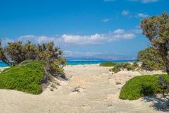 Fundo da paisagem da ilha de Chrissi imagem de stock royalty free