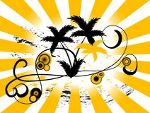 Fundo da palmeira Imagens de Stock