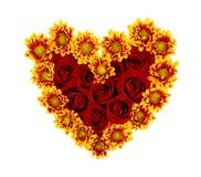 Fundo da parede das flores com rosas surpreendentes imagens de stock royalty free