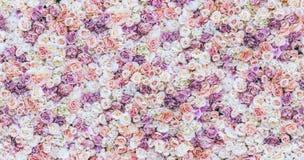 Fundo da parede das flores com surpresa de rosas vermelhas e brancas, decoração do casamento, feito à mão toning fotos de stock royalty free