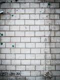 Fundo da parede de Gunge Imagens de Stock