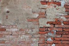 Fundo da parede de tijolo Imagem de Stock