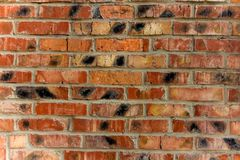 Fundo da parede de tijolo vermelho velha do vintage Imagem de Stock