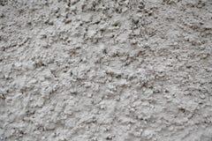 Fundo da parede do cimento Imagem de Stock