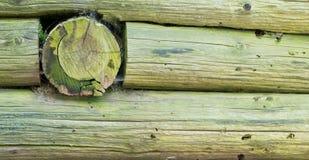 Fundo da parede do log Imagens de Stock