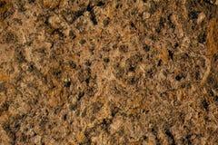 Fundo da pedra calcária Imagem de Stock Royalty Free