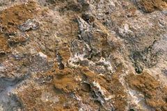 Fundo da pedra de Brown Fotografia de Stock