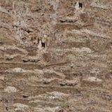 Fundo da pedra do travertino do marrom escuro Textura quadrada sem emenda, foto de stock
