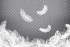 Fundo da pena branca Penas do pássaro ou do anjo do close up Penas sem peso de queda Ilustração ideal ilustração stock
