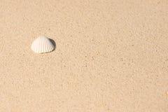 Fundo da praia da areia Fotografia de Stock Royalty Free