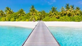 Fundo da praia da ilha de Maldivas As férias e o feriado com palmeiras e a ilha tropical encalham Imagens de Stock Royalty Free