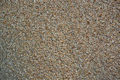 Fundo da praia sand Imagem de Stock Royalty Free