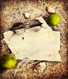 Fundo da praia: shels, sunglusses, coco Imagens de Stock Royalty Free
