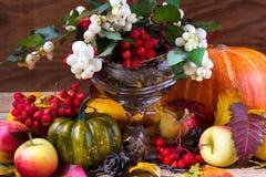 Fundo da queda com snowberry e arranjo de Rowan Foto de Stock Royalty Free