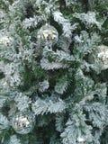 Fundo da reflexão do crystalball da exposição do inverno da neve do forst do Natal da árvore Imagem de Stock