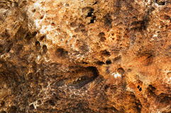 Fundo da rocha vulcânica Imagem de Stock