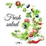 Fundo da salada Aquarela tirada mão ilustração royalty free