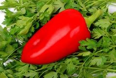 Fundo da salsa e da pimenta vermelha com gotas Imagem de Stock