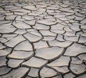 Fundo da terra da seca Fotografia de Stock