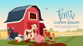 Fundo da terra dos animais de criação de animais da exploração agrícola Imagem de Stock