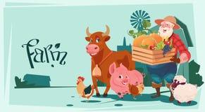 Fundo da terra dos animais de produção dos vegetais de Hold Box With do fazendeiro Foto de Stock