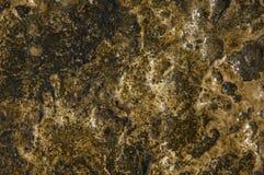 Fundo da textura Imagem de Stock Royalty Free