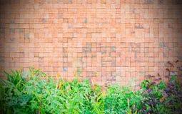 Fundo da textura da parede Fotos de Stock Royalty Free